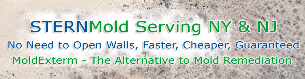 Stern Mold 888-887-8376, no need to open walls, faster, cheaper, guaranteed. MoldExterm - the alternative to mold remediation.