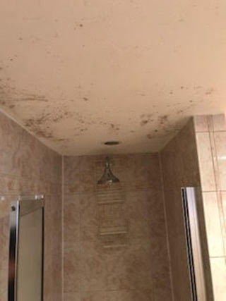 Before: Basement bathroom ceiling covered in mold in Hempstead, New York